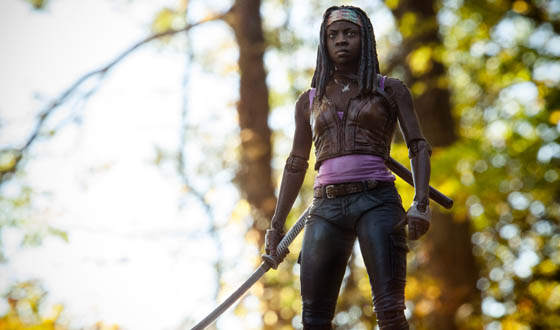 McFarlane Toys The Walking Dead's Michonne
