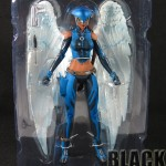 Hawkgirl06