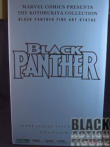 BlackPantherKoto01